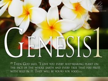 Genesis-1-29-Photo-Bible-Verse