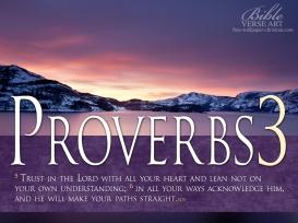 Proverbs-3-5-6-Photo-Bible-Verse