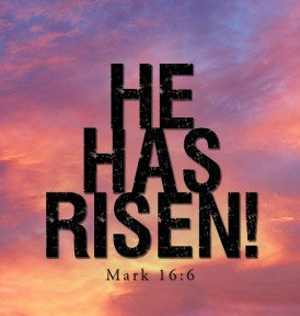 "Mark 16:6 - And he said to them, ""Do not be alarmed. You seek Jesus of Nazareth, who was crucified. He has risen; he is not here. See the place where they laid him"