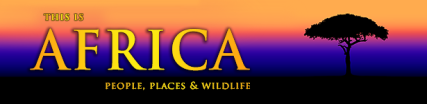 NEW-This-is-Africa-Banner