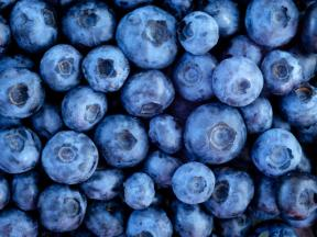blueberries_shutterstock__medium_4x3